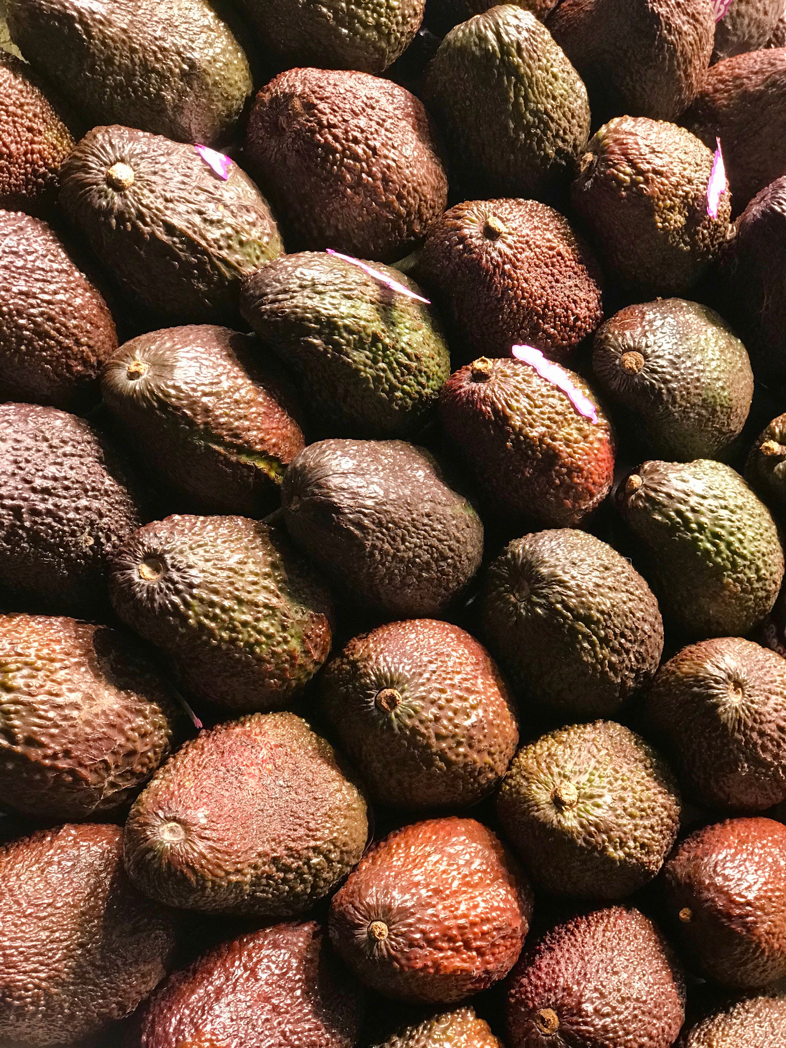 Lots of avocados from above